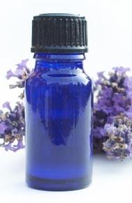 Zen Garden Essential Oil